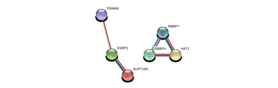 http://string-db.org/version_10/api/image/networkList?limit=0&targetmode=proteins&caller_identity=gene_cards&network_flavor=evidence&identifiers=9606.ENSP00000384876%0d%0a9606.ENSP00000216297%0d%0a9606.ENSP00000278412%0d%0a9606.ENSP00000264108%0d%0a9606.ENSP00000362592%0d%0a9606.ENSP00000369424%0d%0a