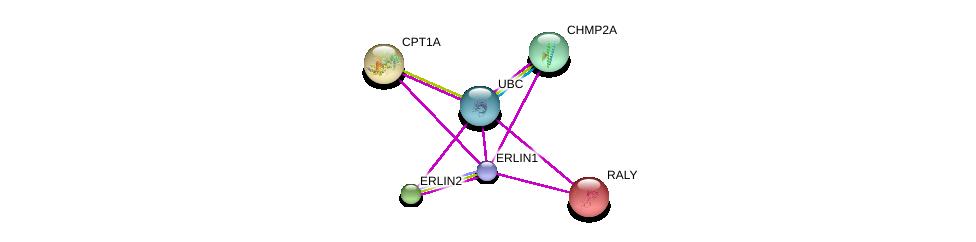 http://string-db.org/version_10/api/image/networkList?limit=0&targetmode=proteins&caller_identity=gene_cards&network_flavor=evidence&identifiers=9606.ENSP00000384900%0d%0a9606.ENSP00000276461%0d%0a9606.ENSP00000344818%0d%0a9606.ENSP00000310440%0d%0a9606.ENSP00000246194%0d%0a9606.ENSP00000265641%0d%0a
