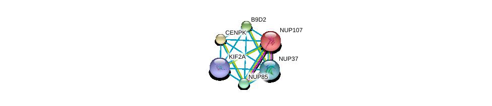 http://string-db.org/version_10/api/image/networkList?limit=0&targetmode=proteins&caller_identity=gene_cards&network_flavor=evidence&identifiers=9606.ENSP00000385000%0d%0a9606.ENSP00000229179%0d%0a9606.ENSP00000242872%0d%0a9606.ENSP00000243578%0d%0a9606.ENSP00000245544%0d%0a9606.ENSP00000251074%0d%0a