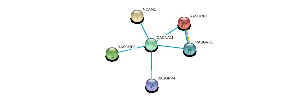 http://string-db.org/version_10/api/image/networkList?limit=0&targetmode=proteins&caller_identity=gene_cards&network_flavor=evidence&identifiers=9606.ENSP00000385019%0d%0a9606.ENSP00000318472%0d%0a9606.ENSP00000384192%0d%0a9606.ENSP00000465742%0d%0a9606.ENSP00000405963%0d%0a9606.ENSP00000265080%0d%0a