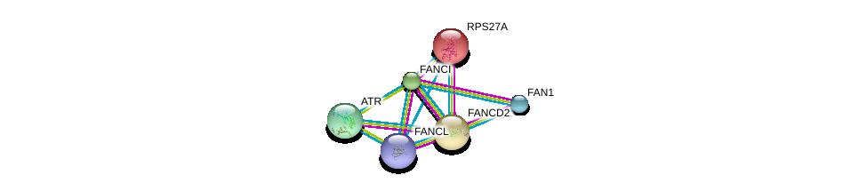 http://string-db.org/version_10/api/image/networkList?limit=0&targetmode=proteins&caller_identity=gene_cards&network_flavor=evidence&identifiers=9606.ENSP00000385021%0d%0a9606.ENSP00000310842%0d%0a9606.ENSP00000287647%0d%0a9606.ENSP00000272317%0d%0a9606.ENSP00000354497%0d%0a9606.ENSP00000343741%0d%0a