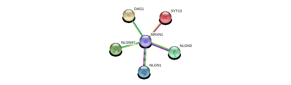 http://string-db.org/version_10/api/image/networkList?limit=0&targetmode=proteins&caller_identity=gene_cards&network_flavor=evidence&identifiers=9606.ENSP00000385142%0d%0a9606.ENSP00000312435%0d%0a9606.ENSP00000351591%0d%0a9606.ENSP00000354541%0d%0a9606.ENSP00000342535%0d%0a9606.ENSP00000020926%0d%0a
