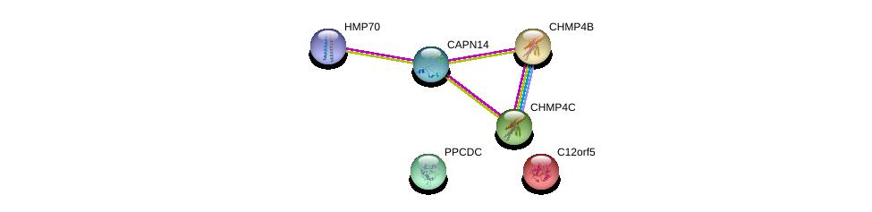 http://string-db.org/version_10/api/image/networkList?limit=0&targetmode=proteins&caller_identity=gene_cards&network_flavor=evidence&identifiers=9606.ENSP00000385247%0d%0a9606.ENSP00000217402%0d%0a9606.ENSP00000297265%0d%0a9606.ENSP00000433967%0d%0a9606.ENSP00000343190%0d%0a9606.ENSP00000179259%0d%0a