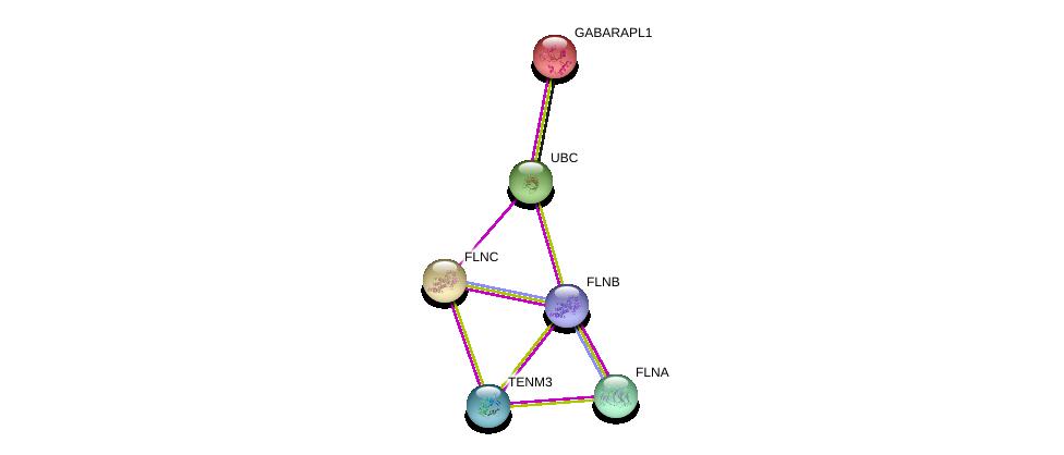 http://string-db.org/version_10/api/image/networkList?limit=0&targetmode=proteins&caller_identity=gene_cards&network_flavor=evidence&identifiers=9606.ENSP00000385276%0d%0a9606.ENSP00000420213%0d%0a9606.ENSP00000358866%0d%0a9606.ENSP00000327145%0d%0a9606.ENSP00000344818%0d%0a9606.ENSP00000266458%0d%0a