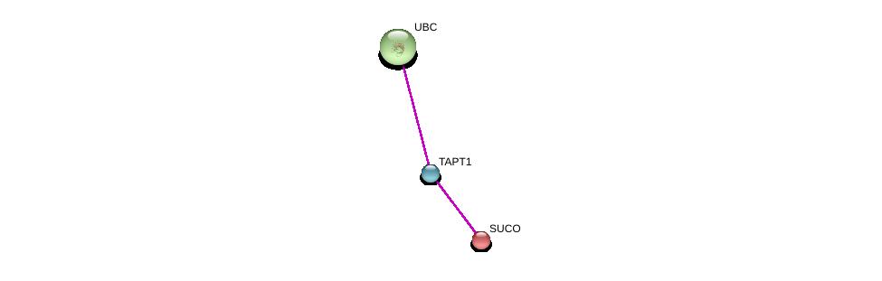 http://string-db.org/version_10/api/image/networkList?limit=0&targetmode=proteins&caller_identity=gene_cards&network_flavor=evidence&identifiers=9606.ENSP00000385347%0d%0a9606.ENSP00000263688%0d%0a9606.ENSP00000344818%0d%0a