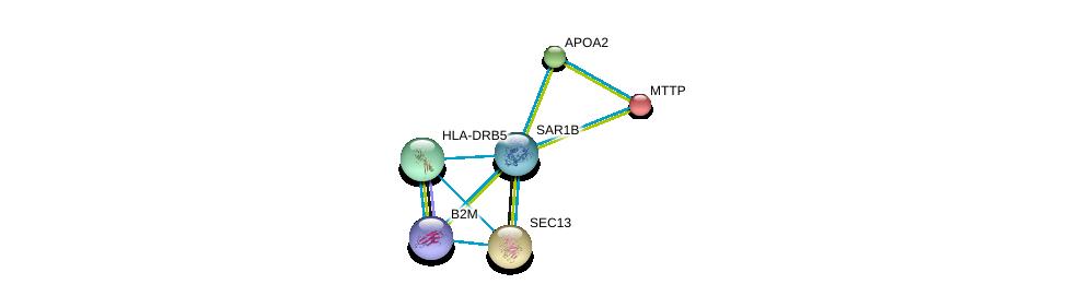 http://string-db.org/version_10/api/image/networkList?limit=0&targetmode=proteins&caller_identity=gene_cards&network_flavor=evidence&identifiers=9606.ENSP00000385432%0d%0a9606.ENSP00000364114%0d%0a9606.ENSP00000356969%0d%0a9606.ENSP00000312122%0d%0a9606.ENSP00000265517%0d%0a9606.ENSP00000452780%0d%0a