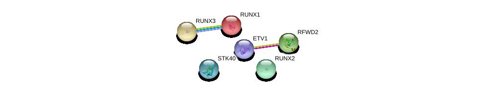 http://string-db.org/version_10/api/image/networkList?limit=0&targetmode=proteins&caller_identity=gene_cards&network_flavor=evidence&identifiers=9606.ENSP00000385551%0d%0a9606.ENSP00000362221%0d%0a9606.ENSP00000356641%0d%0a9606.ENSP00000300305%0d%0a9606.ENSP00000360493%0d%0a9606.ENSP00000343477%0d%0a