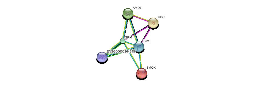 http://string-db.org/version_10/api/image/networkList?limit=0&targetmode=proteins&caller_identity=gene_cards&network_flavor=evidence&identifiers=9606.ENSP00000385746%0d%0a9606.ENSP00000366156%0d%0a9606.ENSP00000385916%0d%0a9606.ENSP00000357880%0d%0a9606.ENSP00000307252%0d%0a9606.ENSP00000344818%0d%0a