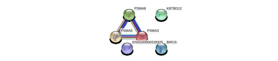http://string-db.org/version_10/api/image/networkList?limit=0&targetmode=proteins&caller_identity=gene_cards&network_flavor=evidence&identifiers=9606.ENSP00000385879%0d%0a9606.ENSP00000402914%0d%0a9606.ENSP00000216455%0d%0a9606.ENSP00000271308%0d%0a9606.ENSP00000393596%0d%0a9606.ENSP00000311121%0d%0a