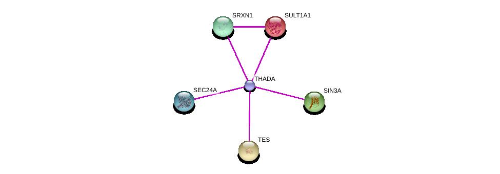 http://string-db.org/version_10/api/image/networkList?limit=0&targetmode=proteins&caller_identity=gene_cards&network_flavor=evidence&identifiers=9606.ENSP00000385995%0d%0a9606.ENSP00000350937%0d%0a9606.ENSP00000353622%0d%0a9606.ENSP00000321988%0d%0a9606.ENSP00000371388%0d%0a9606.ENSP00000381823%0d%0a