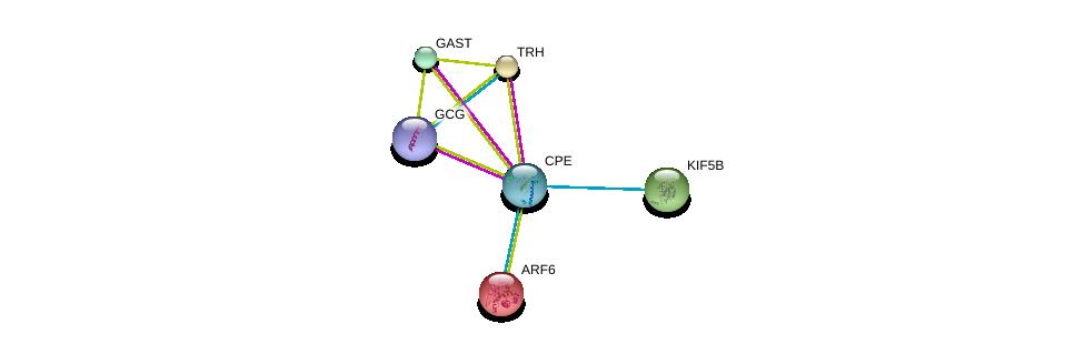 http://string-db.org/version_10/api/image/networkList?limit=0&targetmode=proteins&caller_identity=gene_cards&network_flavor=evidence&identifiers=9606.ENSP00000386104%0d%0a9606.ENSP00000307078%0d%0a9606.ENSP00000298316%0d%0a9606.ENSP00000387662%0d%0a9606.ENSP00000331358%0d%0a9606.ENSP00000303452%0d%0a