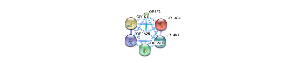 http://string-db.org/version_10/api/image/networkList?limit=0&targetmode=proteins&caller_identity=gene_cards&network_flavor=evidence&identifiers=9606.ENSP00000386167%0d%0a9606.ENSP00000277216%0d%0a9606.ENSP00000277309%0d%0a9606.ENSP00000278409%0d%0a9606.ENSP00000279791%0d%0a9606.ENSP00000283225%0d%0a