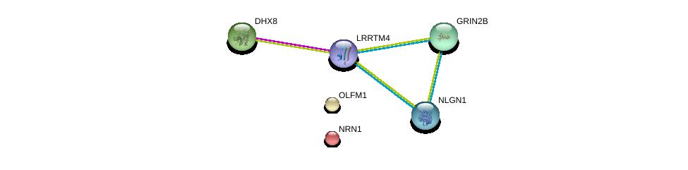http://string-db.org/version_10/api/image/networkList?limit=0&targetmode=proteins&caller_identity=gene_cards&network_flavor=evidence&identifiers=9606.ENSP00000386357%0d%0a9606.ENSP00000262415%0d%0a9606.ENSP00000279593%0d%0a9606.ENSP00000354541%0d%0a9606.ENSP00000252854%0d%0a9606.ENSP00000244766%0d%0a