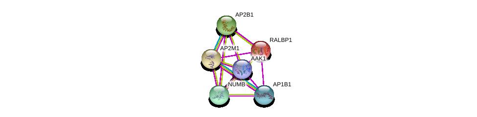 http://string-db.org/version_10/api/image/networkList?limit=0&targetmode=proteins&caller_identity=gene_cards&network_flavor=evidence&identifiers=9606.ENSP00000386456%0d%0a9606.ENSP00000019317%0d%0a9606.ENSP00000292807%0d%0a9606.ENSP00000350199%0d%0a9606.ENSP00000314414%0d%0a9606.ENSP00000347169%0d%0a
