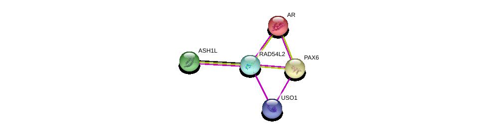 http://string-db.org/version_10/api/image/networkList?limit=0&targetmode=proteins&caller_identity=gene_cards&network_flavor=evidence&identifiers=9606.ENSP00000386520%0d%0a9606.ENSP00000363822%0d%0a9606.ENSP00000440586%0d%0a9606.ENSP00000368401%0d%0a9606.ENSP00000376204%0d%0a9606.ENSP00000376204%0d%0a