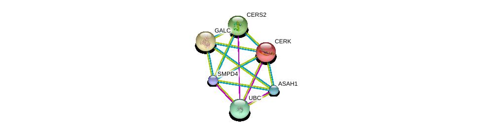 http://string-db.org/version_10/api/image/networkList?limit=0&targetmode=proteins&caller_identity=gene_cards&network_flavor=evidence&identifiers=9606.ENSP00000386531%0d%0a9606.ENSP00000344818%0d%0a9606.ENSP00000371152%0d%0a9606.ENSP00000216264%0d%0a9606.ENSP00000261304%0d%0a9606.ENSP00000271688%0d%0a