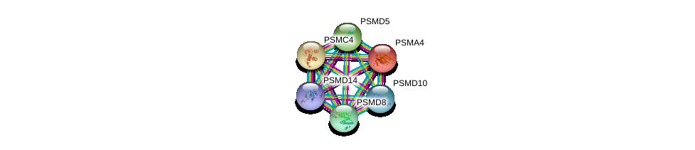 http://string-db.org/version_10/api/image/networkList?limit=0&targetmode=proteins&caller_identity=gene_cards&network_flavor=evidence&identifiers=9606.ENSP00000386541%0d%0a9606.ENSP00000044462%0d%0a9606.ENSP00000157812%0d%0a9606.ENSP00000210313%0d%0a9606.ENSP00000215071%0d%0a9606.ENSP00000217958%0d%0a