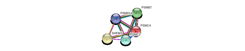http://string-db.org/version_10/api/image/networkList?limit=0&targetmode=proteins&caller_identity=gene_cards&network_flavor=evidence&identifiers=9606.ENSP00000386541%0d%0a9606.ENSP00000157812%0d%0a9606.ENSP00000248566%0d%0a9606.ENSP00000248566%0d%0a9606.ENSP00000259457%0d%0a9606.ENSP00000261303%0d%0a