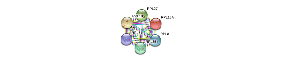 http://string-db.org/version_10/api/image/networkList?limit=0&targetmode=proteins&caller_identity=gene_cards&network_flavor=evidence&identifiers=9606.ENSP00000386717%0d%0a9606.ENSP00000222247%0d%0a9606.ENSP00000225430%0d%0a9606.ENSP00000253788%0d%0a9606.ENSP00000259469%0d%0a9606.ENSP00000262584%0d%0a