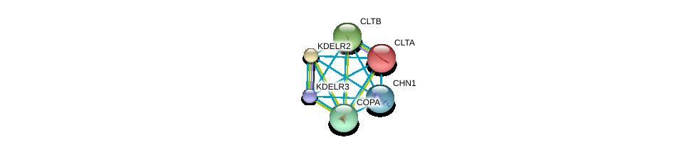 http://string-db.org/version_10/api/image/networkList?limit=0&targetmode=proteins&caller_identity=gene_cards&network_flavor=evidence&identifiers=9606.ENSP00000386741%0d%0a9606.ENSP00000357048%0d%0a9606.ENSP00000309415%0d%0a9606.ENSP00000242285%0d%0a9606.ENSP00000258739%0d%0a9606.ENSP00000386918%0d%0a