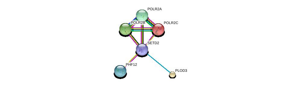http://string-db.org/version_10/api/image/networkList?limit=0&targetmode=proteins&caller_identity=gene_cards&network_flavor=evidence&identifiers=9606.ENSP00000386759%0d%0a9606.ENSP00000312735%0d%0a9606.ENSP00000329933%0d%0a9606.ENSP00000219252%0d%0a9606.ENSP00000314949%0d%0a9606.ENSP00000223127%0d%0a