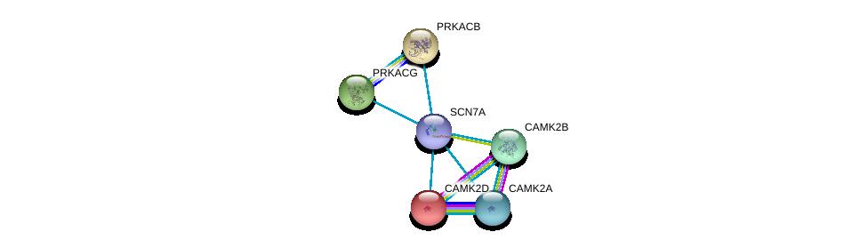 http://string-db.org/version_10/api/image/networkList?limit=0&targetmode=proteins&caller_identity=gene_cards&network_flavor=evidence&identifiers=9606.ENSP00000386796%0d%0a9606.ENSP00000381412%0d%0a9606.ENSP00000379098%0d%0a9606.ENSP00000366488%0d%0a9606.ENSP00000359719%0d%0a9606.ENSP00000339740%0d%0a