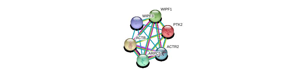 http://string-db.org/version_10/api/image/networkList?limit=0&targetmode=proteins&caller_identity=gene_cards&network_flavor=evidence&identifiers=9606.ENSP00000386878%0d%0a9606.ENSP00000367220%0d%0a9606.ENSP00000352918%0d%0a9606.ENSP00000352802%0d%0a9606.ENSP00000349960%0d%0a9606.ENSP00000341189%0d%0a