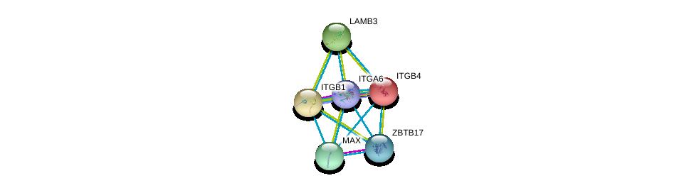 http://string-db.org/version_10/api/image/networkList?limit=0&targetmode=proteins&caller_identity=gene_cards&network_flavor=evidence&identifiers=9606.ENSP00000386896%0d%0a9606.ENSP00000303351%0d%0a9606.ENSP00000200181%0d%0a9606.ENSP00000351490%0d%0a9606.ENSP00000364895%0d%0a9606.ENSP00000348384%0d%0a
