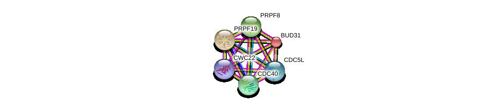 http://string-db.org/version_10/api/image/networkList?limit=0&targetmode=proteins&caller_identity=gene_cards&network_flavor=evidence&identifiers=9606.ENSP00000387006%0d%0a9606.ENSP00000227524%0d%0a9606.ENSP00000360532%0d%0a9606.ENSP00000304370%0d%0a9606.ENSP00000222969%0d%0a9606.ENSP00000304350%0d%0a