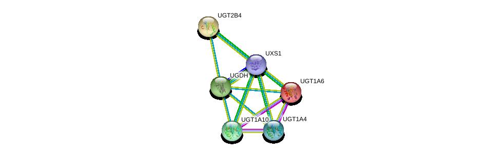 http://string-db.org/version_10/api/image/networkList?limit=0&targetmode=proteins&caller_identity=gene_cards&network_flavor=evidence&identifiers=9606.ENSP00000387019%0d%0a9606.ENSP00000303174%0d%0a9606.ENSP00000305221%0d%0a9606.ENSP00000319501%0d%0a9606.ENSP00000343838%0d%0a9606.ENSP00000362508%0d%0a