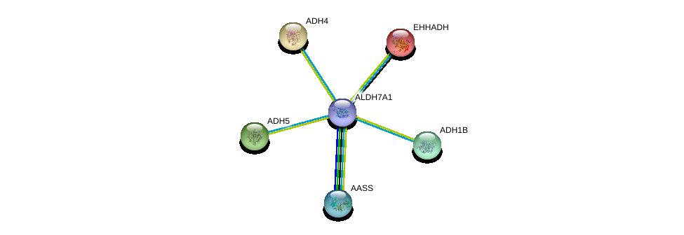 http://string-db.org/version_10/api/image/networkList?limit=0&targetmode=proteins&caller_identity=gene_cards&network_flavor=evidence&identifiers=9606.ENSP00000387123%0d%0a9606.ENSP00000265512%0d%0a9606.ENSP00000296412%0d%0a9606.ENSP00000306606%0d%0a9606.ENSP00000377040%0d%0a9606.ENSP00000231887%0d%0a