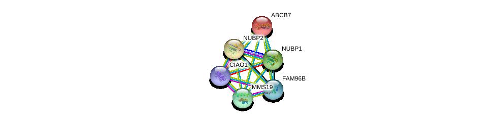 http://string-db.org/version_10/api/image/networkList?limit=0&targetmode=proteins&caller_identity=gene_cards&network_flavor=evidence&identifiers=9606.ENSP00000387471%0d%0a9606.ENSP00000418287%0d%0a9606.ENSP00000359818%0d%0a9606.ENSP00000262302%0d%0a9606.ENSP00000253577%0d%0a9606.ENSP00000283027%0d%0a