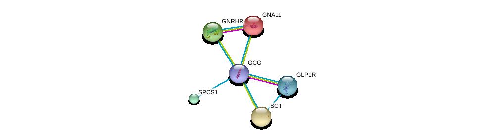 http://string-db.org/version_10/api/image/networkList?limit=0&targetmode=proteins&caller_identity=gene_cards&network_flavor=evidence&identifiers=9606.ENSP00000387662%0d%0a9606.ENSP00000362353%0d%0a9606.ENSP00000078429%0d%0a9606.ENSP00000176195%0d%0a9606.ENSP00000226413%0d%0a9606.ENSP00000233025%0d%0a