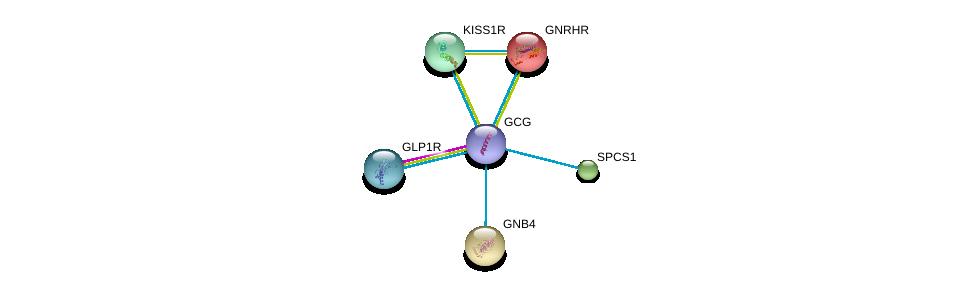 http://string-db.org/version_10/api/image/networkList?limit=0&targetmode=proteins&caller_identity=gene_cards&network_flavor=evidence&identifiers=9606.ENSP00000387662%0d%0a9606.ENSP00000362353%0d%0a9606.ENSP00000226413%0d%0a9606.ENSP00000232564%0d%0a9606.ENSP00000233025%0d%0a9606.ENSP00000234371%0d%0a