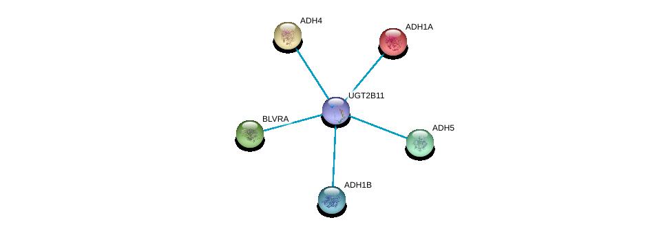 http://string-db.org/version_10/api/image/networkList?limit=0&targetmode=proteins&caller_identity=gene_cards&network_flavor=evidence&identifiers=9606.ENSP00000387683%0d%0a9606.ENSP00000209668%0d%0a9606.ENSP00000265512%0d%0a9606.ENSP00000265523%0d%0a9606.ENSP00000296412%0d%0a9606.ENSP00000306606%0d%0a