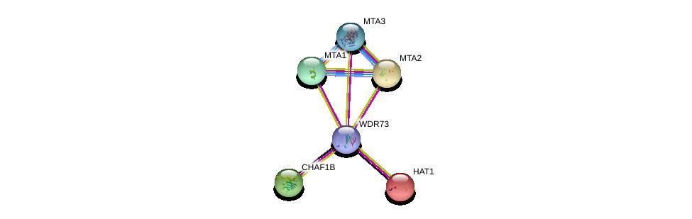 http://string-db.org/version_10/api/image/networkList?limit=0&targetmode=proteins&caller_identity=gene_cards&network_flavor=evidence&identifiers=9606.ENSP00000387982%0d%0a9606.ENSP00000264108%0d%0a9606.ENSP00000315700%0d%0a9606.ENSP00000278823%0d%0a9606.ENSP00000385045%0d%0a9606.ENSP00000333633%0d%0a