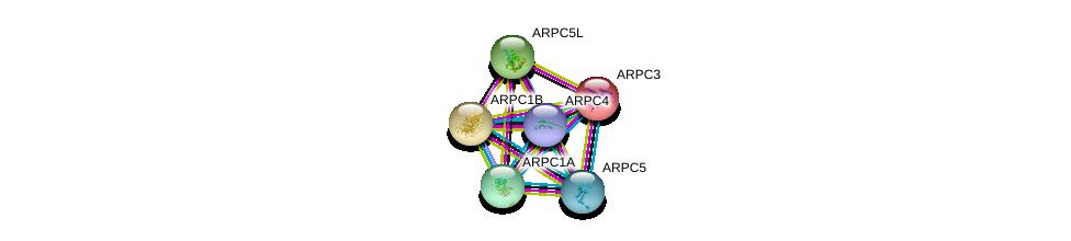 http://string-db.org/version_10/api/image/networkList?limit=0&targetmode=proteins&caller_identity=gene_cards&network_flavor=evidence&identifiers=9606.ENSP00000388169%0d%0a9606.ENSP00000352918%0d%0a9606.ENSP00000228825%0d%0a9606.ENSP00000252725%0d%0a9606.ENSP00000259477%0d%0a9606.ENSP00000262942%0d%0a