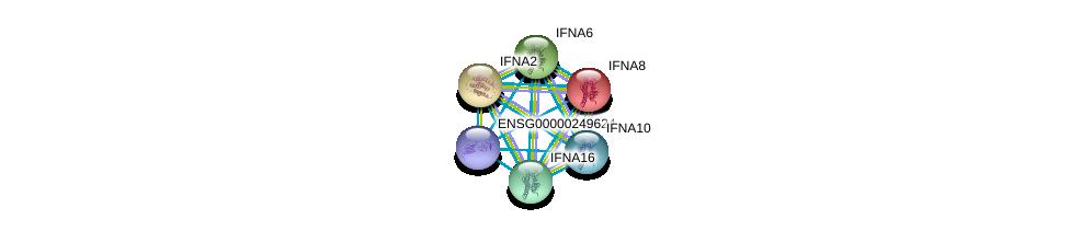 http://string-db.org/version_10/api/image/networkList?limit=0&targetmode=proteins&caller_identity=gene_cards&network_flavor=evidence&identifiers=9606.ENSP00000388223%0d%0a9606.ENSP00000369553%0d%0a9606.ENSP00000369554%0d%0a9606.ENSP00000369558%0d%0a9606.ENSP00000369564%0d%0a9606.ENSP00000369566%0d%0a