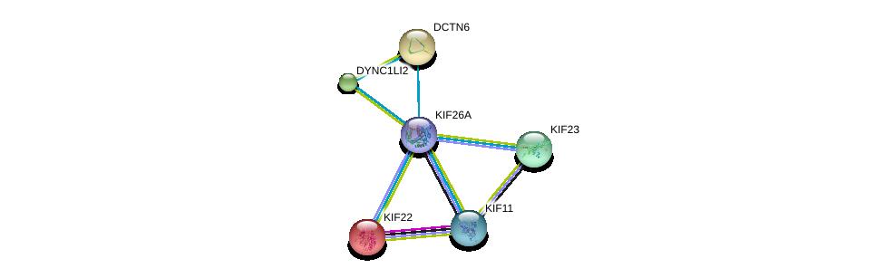 http://string-db.org/version_10/api/image/networkList?limit=0&targetmode=proteins&caller_identity=gene_cards&network_flavor=evidence&identifiers=9606.ENSP00000388241%0d%0a9606.ENSP00000160827%0d%0a9606.ENSP00000221114%0d%0a9606.ENSP00000258198%0d%0a9606.ENSP00000260363%0d%0a9606.ENSP00000260731%0d%0a