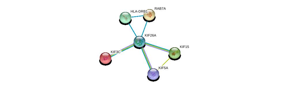 http://string-db.org/version_10/api/image/networkList?limit=0&targetmode=proteins&caller_identity=gene_cards&network_flavor=evidence&identifiers=9606.ENSP00000388241%0d%0a9606.ENSP00000265062%0d%0a9606.ENSP00000324020%0d%0a9606.ENSP00000408979%0d%0a9606.ENSP00000264712%0d%0a9606.ENSP00000353099%0d%0a