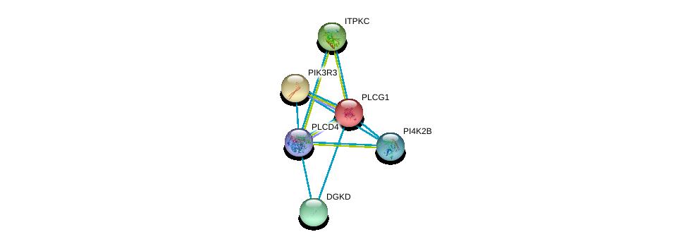http://string-db.org/version_10/api/image/networkList?limit=0&targetmode=proteins&caller_identity=gene_cards&network_flavor=evidence&identifiers=9606.ENSP00000388631%0d%0a9606.ENSP00000244007%0d%0a9606.ENSP00000262741%0d%0a9606.ENSP00000263370%0d%0a9606.ENSP00000264057%0d%0a9606.ENSP00000264864%0d%0a