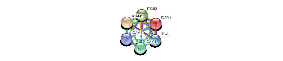 http://string-db.org/version_10/api/image/networkList?limit=0&targetmode=proteins&caller_identity=gene_cards&network_flavor=evidence&identifiers=9606.ENSP00000388666%0d%0a9606.ENSP00000349252%0d%0a9606.ENSP00000160262%0d%0a9606.ENSP00000342114%0d%0a9606.ENSP00000264832%0d%0a9606.ENSP00000303242%0d%0a
