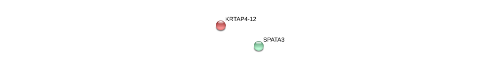 http://string-db.org/version_10/api/image/networkList?limit=0&targetmode=proteins&caller_identity=gene_cards&network_flavor=evidence&identifiers=9606.ENSP00000388741%0d%0a9606.ENSP00000377582%0d%0a