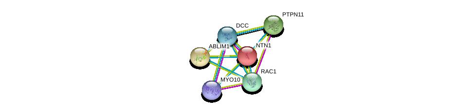 http://string-db.org/version_10/api/image/networkList?limit=0&targetmode=proteins&caller_identity=gene_cards&network_flavor=evidence&identifiers=9606.ENSP00000389140%0d%0a9606.ENSP00000173229%0d%0a9606.ENSP00000421280%0d%0a9606.ENSP00000338190%0d%0a9606.ENSP00000340944%0d%0a9606.ENSP00000348461%0d%0a