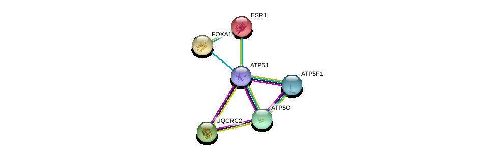 http://string-db.org/version_10/api/image/networkList?limit=0&targetmode=proteins&caller_identity=gene_cards&network_flavor=evidence&identifiers=9606.ENSP00000389649%0d%0a9606.ENSP00000358737%0d%0a9606.ENSP00000290299%0d%0a9606.ENSP00000268379%0d%0a9606.ENSP00000206249%0d%0a9606.ENSP00000250448%0d%0a