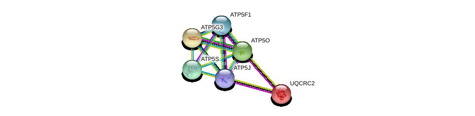 http://string-db.org/version_10/api/image/networkList?limit=0&targetmode=proteins&caller_identity=gene_cards&network_flavor=evidence&identifiers=9606.ENSP00000389649%0d%0a9606.ENSP00000358737%0d%0a9606.ENSP00000290299%0d%0a9606.ENSP00000268379%0d%0a9606.ENSP00000284727%0d%0a9606.ENSP00000308334%0d%0a