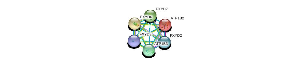 http://string-db.org/version_10/api/image/networkList?limit=0&targetmode=proteins&caller_identity=gene_cards&network_flavor=evidence&identifiers=9606.ENSP00000389770%0d%0a9606.ENSP00000250111%0d%0a9606.ENSP00000260282%0d%0a9606.ENSP00000270310%0d%0a9606.ENSP00000286371%0d%0a9606.ENSP00000292079%0d%0a