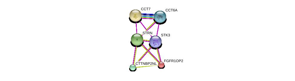 http://string-db.org/version_10/api/image/networkList?limit=0&targetmode=proteins&caller_identity=gene_cards&network_flavor=evidence&identifiers=9606.ENSP00000390500%0d%0a9606.ENSP00000229395%0d%0a9606.ENSP00000258091%0d%0a9606.ENSP00000263918%0d%0a9606.ENSP00000271277%0d%0a9606.ENSP00000275603%0d%0a