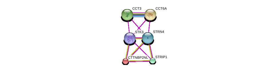 http://string-db.org/version_10/api/image/networkList?limit=0&targetmode=proteins&caller_identity=gene_cards&network_flavor=evidence&identifiers=9606.ENSP00000390500%0d%0a9606.ENSP00000295688%0d%0a9606.ENSP00000375777%0d%0a9606.ENSP00000358810%0d%0a9606.ENSP00000271277%0d%0a9606.ENSP00000275603%0d%0a