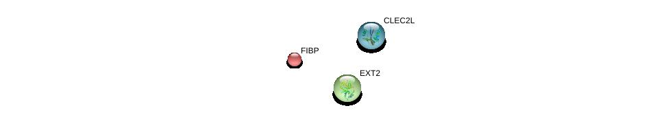 http://string-db.org/version_10/api/image/networkList?limit=0&targetmode=proteins&caller_identity=gene_cards&network_flavor=evidence&identifiers=9606.ENSP00000390661%0d%0a9606.ENSP00000379032%0d%0a9606.ENSP00000344572%0d%0a